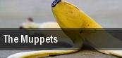 The Muppets Salle Wilfrid Pelletier tickets
