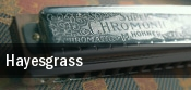 Hayesgrass tickets