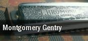 Montgomery Gentry Effingham Performance Center tickets