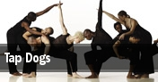 Tap Dogs Hartford tickets