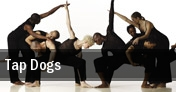 Tap Dogs McCain Auditorium tickets