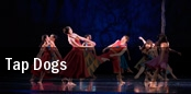 Tap Dogs Peabody Auditorium tickets
