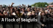 A Flock of Seagulls tickets