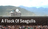 A Flock of Seagulls Cafe Central tickets