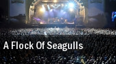 A Flock of Seagulls Santa Ana tickets