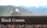 Black Crowes Saint Augustine tickets