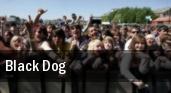 Black Dog B.B. King Blues Club & Grill tickets