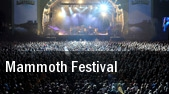Mammoth Festival tickets