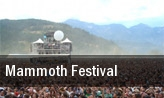Mammoth Festival Mammoth Mountain Ski Area tickets