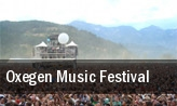 Oxegen Music Festival Punchestown Racecourse tickets