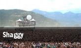 Shaggy Englewood tickets