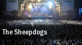 The Sheepdogs Sugar Night Club tickets