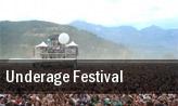 Underage Festival Hackney tickets
