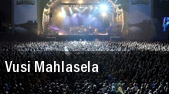 Vusi Mahlasela Temple For The Performing Arts tickets