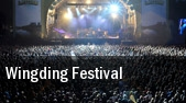 Wingding Festival Chicago RFD International Airport tickets