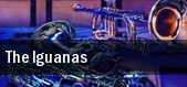 The Iguanas Vienna tickets