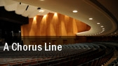A Chorus Line Times Union Ctr Perf Arts Moran Theater tickets