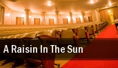 A Raisin in the Sun tickets