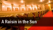 A Raisin in the Sun Clarence Brown Theatre tickets