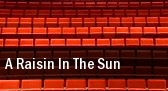 A Raisin in the Sun Stage Theatre tickets