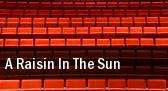 A Raisin in the Sun Stage Theatre tickets