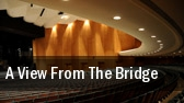 A View From The Bridge Charline McCombs Empire Theatre tickets