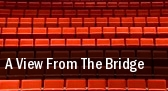 A View From The Bridge Cort Theatre tickets