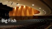 Big Fish Chicago tickets
