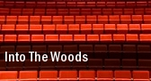 Into the Woods George Mason Center For The Arts tickets