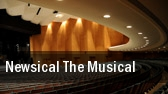 Newsical - The Musical New York tickets