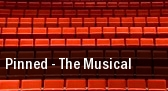 Pinned - The Musical Phantasy tickets