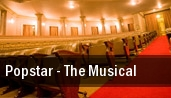 Popstar - The Musical Birmingham tickets