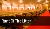 Runt of the Litter 37 Arts Theatre tickets