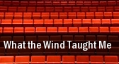 What the Wind Taught Me Lincoln tickets