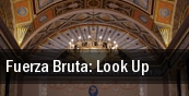 Fuerza Bruta: Look Up tickets