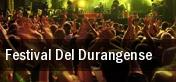 Festival Del Durangense tickets