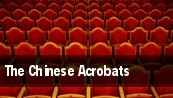 The Chinese Acrobats tickets