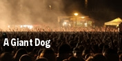 A Giant Dog tickets