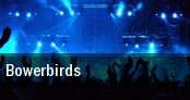 Bowerbirds New York tickets