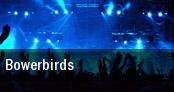 Bowerbirds Tralf tickets