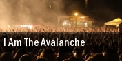 I Am The Avalanche New York tickets