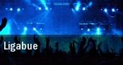 Ligabue PalaEvangelisti tickets