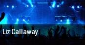 Liz Callaway tickets