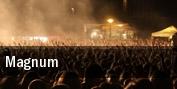 Magnum O2 Academy Islington tickets