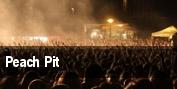 Peach Pit Detroit tickets