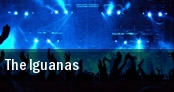 The Iguanas tickets