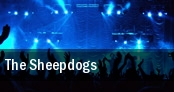 The Sheepdogs Middle East tickets