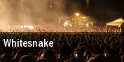 Whitesnake Chinook Winds Casino tickets
