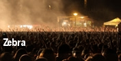Zebra Poughkeepsie tickets