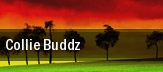 Collie Buddz Commodore Ballroom tickets